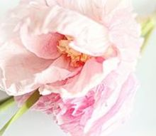 realistic crepe paper flower, crafts, flowers