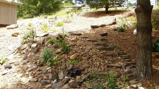 does any one have any suggestions for creating a path to walk down a steep hill in my, landscape, outdoor living