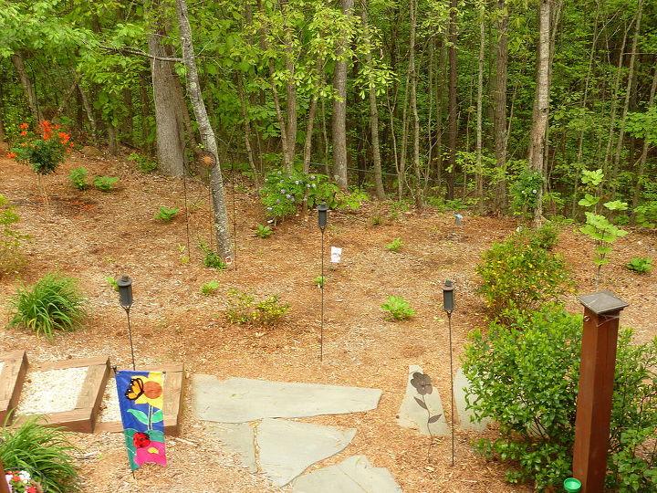 Flagstone walkway onto deck area. New Wisteria, Esperanza, Clematis, hostas, gardenia, fig tree