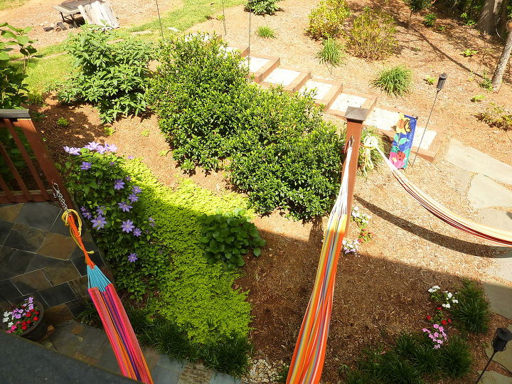 Hammocks and part of garden