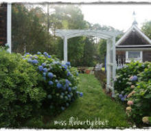 my home, gardening, outdoor living, Through the arbor to the potting shed