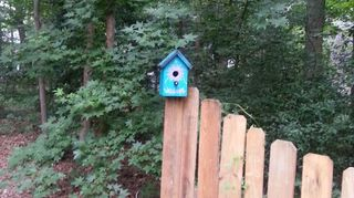 q painted birdhouses, crafts, painting, In my backyard I have fun with color