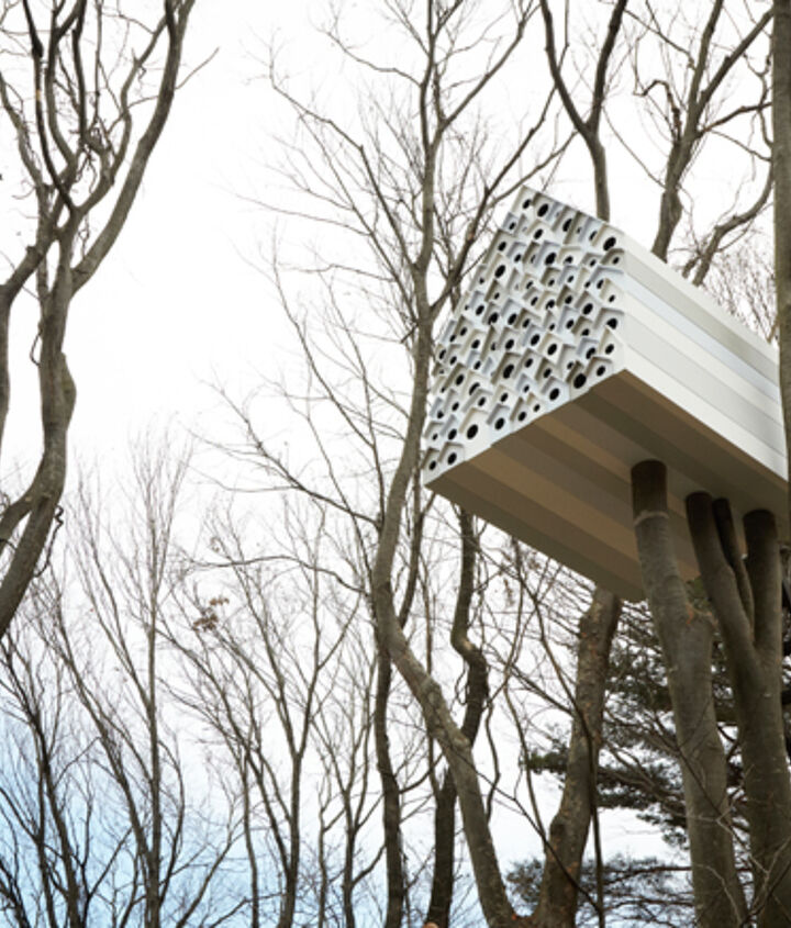 Giant birdhouse with an observation room