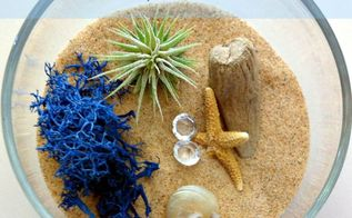 mini beach terrarium in stemless wine glass, gardening, repurposing upcycling, seasonal holiday d cor, terrarium, A wine glass stemless in this case some sand an easy care air plant and a few fun beachy accessories make the cutest little terrarium