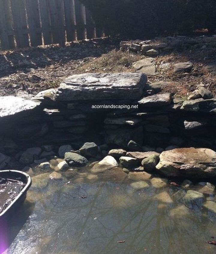 Fish Pond Cleaning in Rochester NY