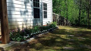 q overwhelmed by overgrown backyard, gardening, landscape