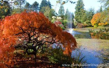 vandusen botanical gardens a vancouver classic, gardening, Livingstone Lake at VanDusen Botanical Gardens in Vancouver