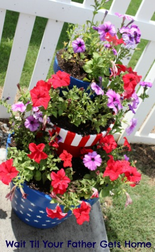 Star Spangled Planter