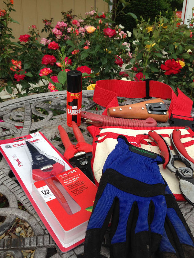 A rosarians tool kit for pruning