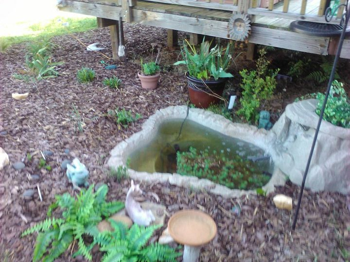 pond before and after, ponds water features