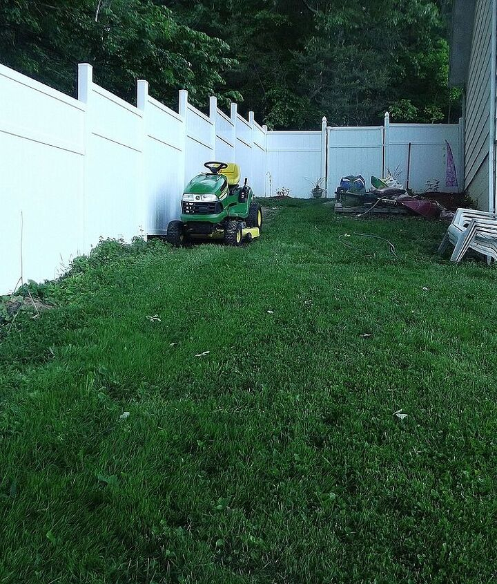 Showing more of the fence line to show the slope of the yard. Eventually the entire fence line will have plantings. I just started on the other side of the yard and am making my way around