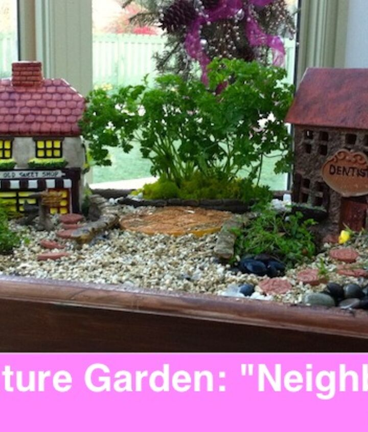 Miniature And Fairy Garden Design Ideas By Shirley Bovshow Hometalk