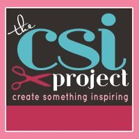 The CSI Project