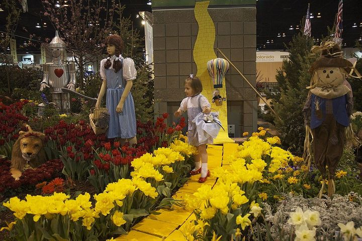 Poor Dorothy and the Cowardly Lion were caught in the field of poppies (or in this case a field of tulips when poppies aren't available in February in Colorado)!