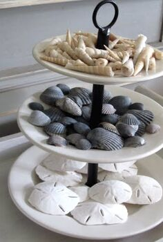 30 ways to display a seashell collection, home decor, Three tier tray holds a seashell collection and sand dollars found on the beach