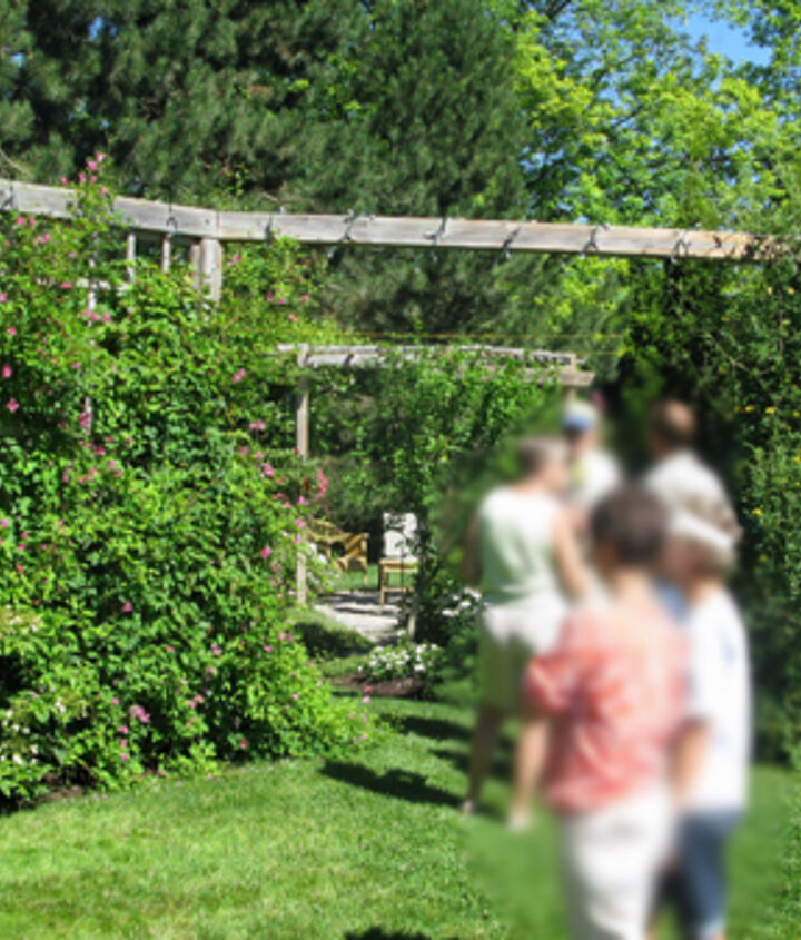 This tall, open divider separated the sitting area from the lawn. The large, square lattice keeps material costs down. The greenery provides greater privacy.
