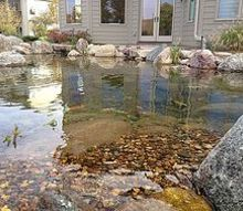 ecosystem ponds water gardens in the des moines iowa metro by just add water, outdoor living, ponds water features, To learn more about our pond construction https www facebook com notes just add water pond fish koi pond backyard landscape pond aquascape ecosystem pond water garden 478461102188914 Aquascape Ecosystem Pond Water Garden Koi Fish