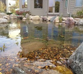 Ecosystem Ponds Water Gardens In The Des Moines Iowa Metro By Just Add  Water, ...
