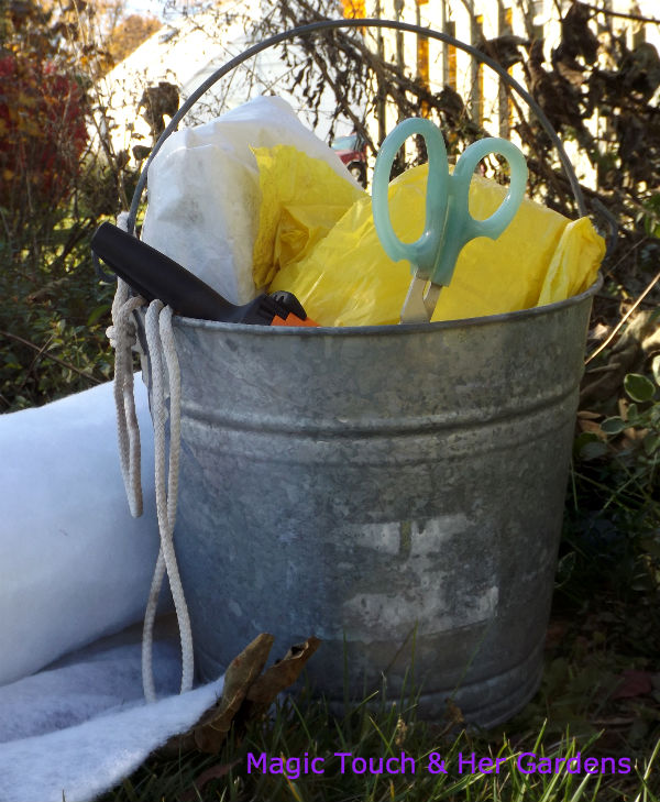 Supplies needed to wrap your planted Fig for the Winter