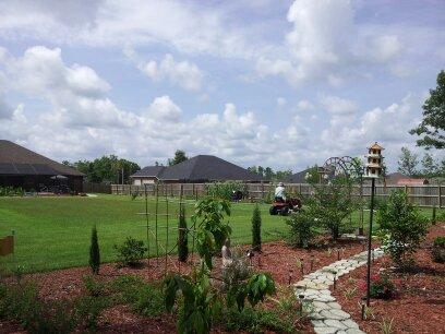 our garden, gardening, landscape, outdoor living, Our Garden now