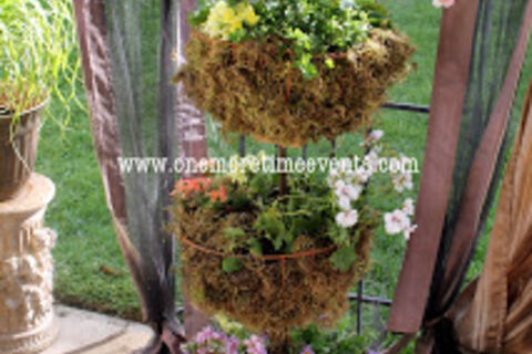 Flip Flop Planter Using A Dome Floor Lamp Hometalk