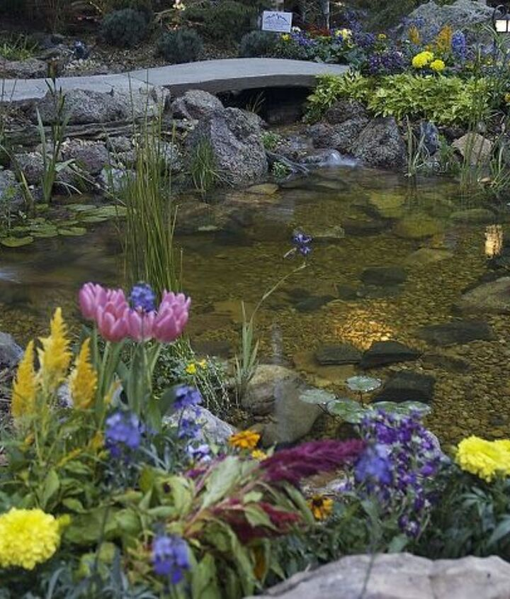 Highlighted by underwater lighting, this crystal clear pond is showcased at the Colorado Home show.  It has a bridge over the stream cascading into it.