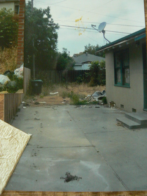 At the end of the cement is where our little shed is now.