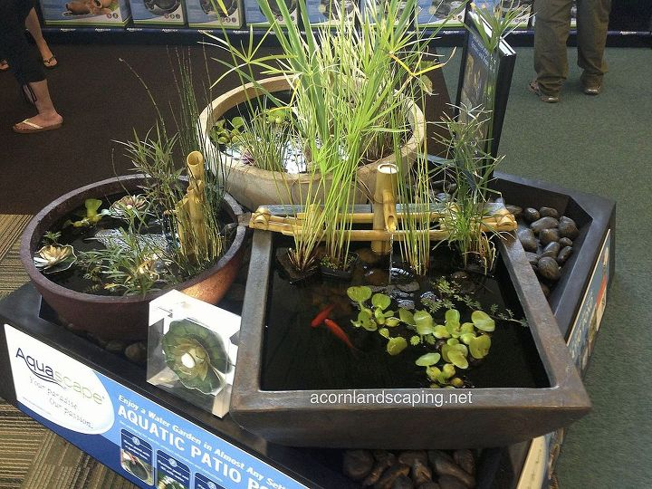 Thinking about adding a fountain or water feature to your patio, garden or deck? These patio ponds are a great way to have fun water gardening and can go almost anywhere!