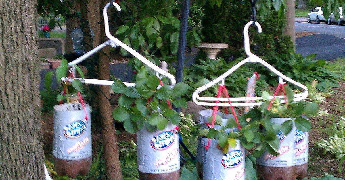 Super Homemade Topsy Turvy Bags/ Hanging Plastic Bottle Planters   Hometalk KI92