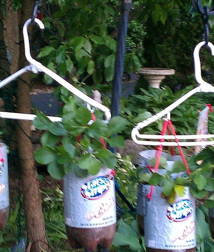 Homemade Topsy Turvy Bags Hanging Plastic Bottle Planters Hometalk
