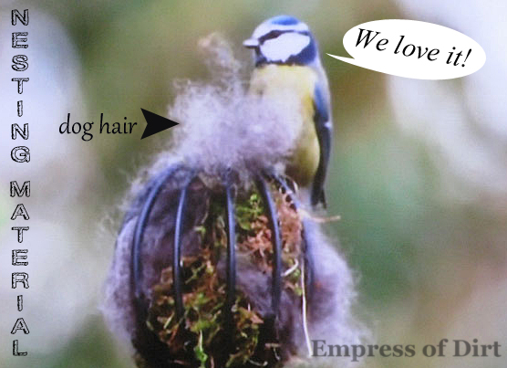 offer safe nesting materials for the birds, gardening, pets animals, Dog hair is one of many good choices