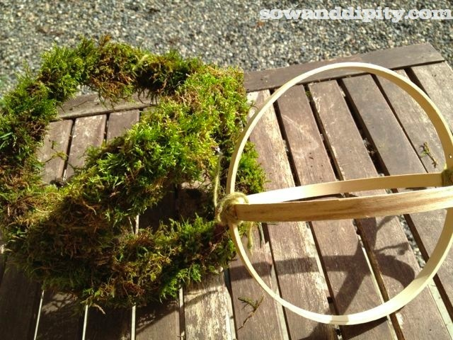 Grab handful's of moss and squeeze it around the ring using the twine to wrap as you go until it's covered.