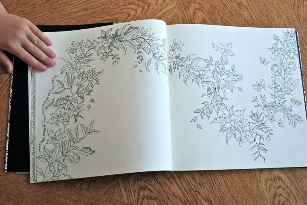 The Secret Garden Coloring Book by Johanna Basford | Hometalk