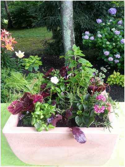 There is no reason to think a beautiful container garden has to be limited to flowers.  Vegetables and herbs and be just as head-turning!