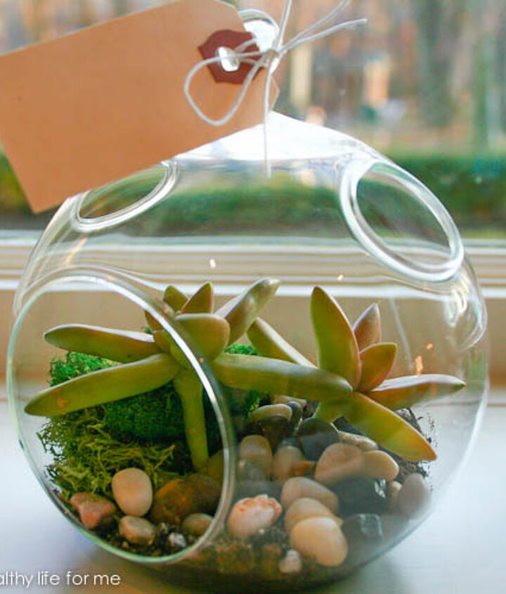 how to make a terrarium, crafts, gardening, terrarium