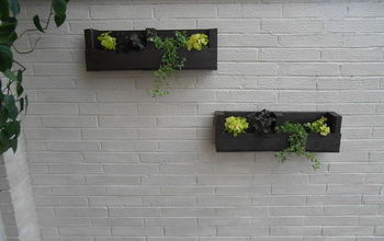 from pallet to wall planters, diy, gardening, pallet, repurposing upcycling, woodworking projects, Wall after I hung my planters