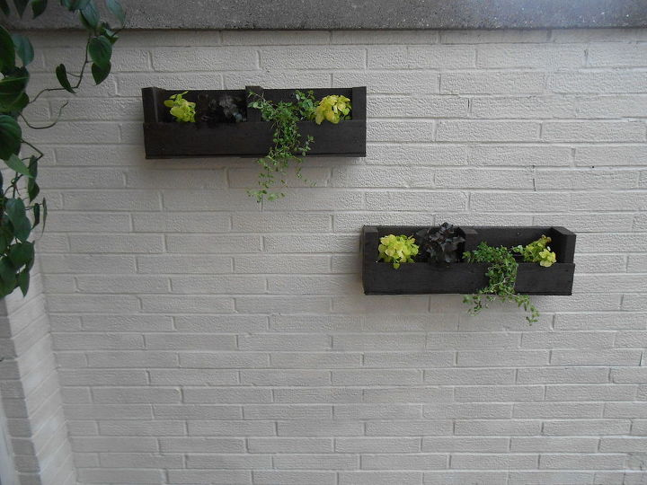 Wall after I hung my planters