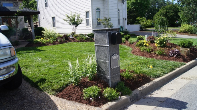 And after! We added a border garden all along the property line to define our space.