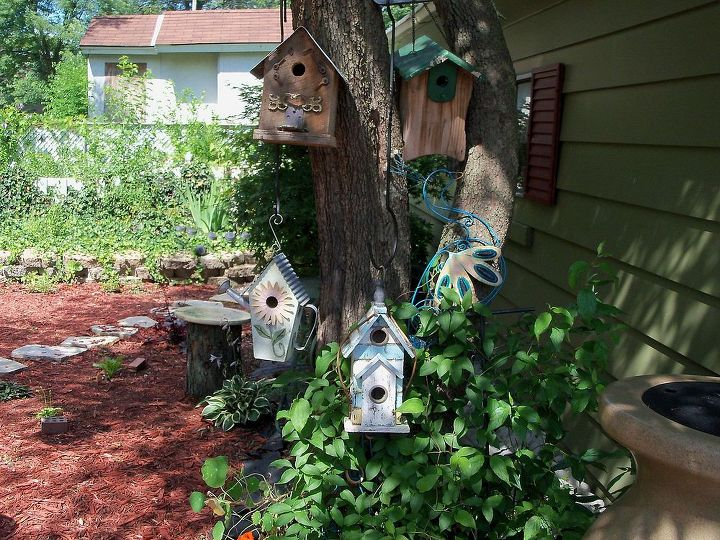 some of my birdhouses and the sleeping clematis