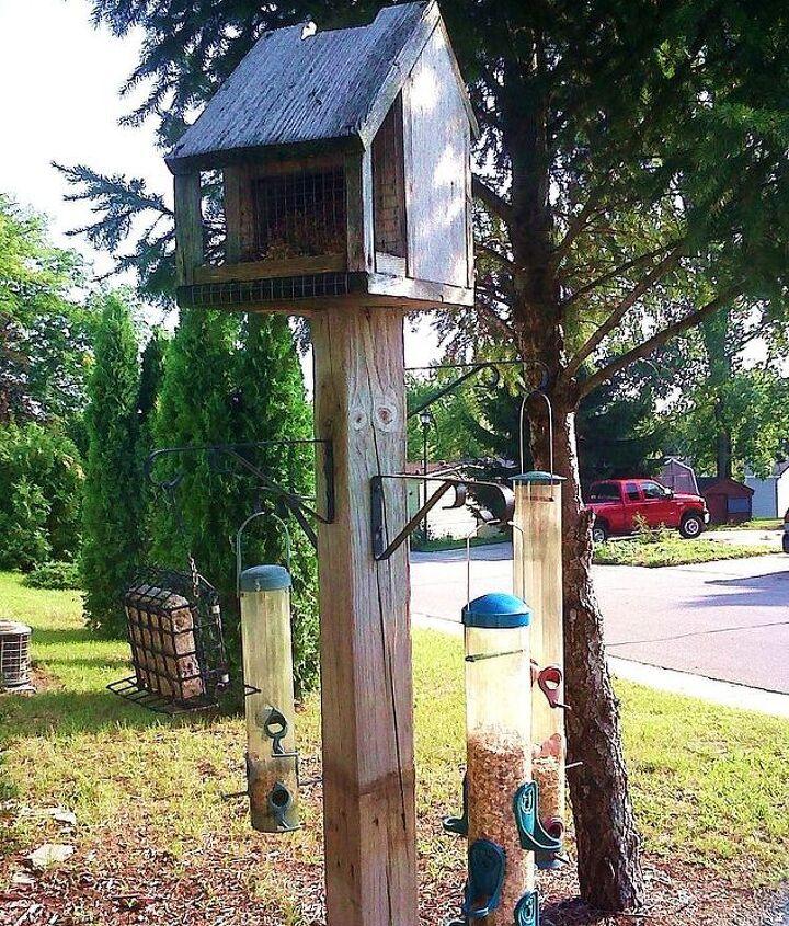 My bird feeder