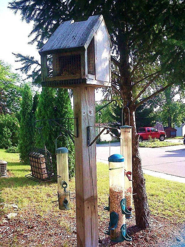 my bird feeder project, gardening, My bird feeder