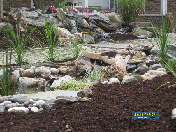 A broader view of the design shows the bog/filtration area along with the first half of the natural stream that features small pooling areas along the way which is key for a natural look.