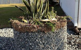 gabion planter from defunct clothes dryer, gardening, repurposing upcycling, succulents, The completed planter
