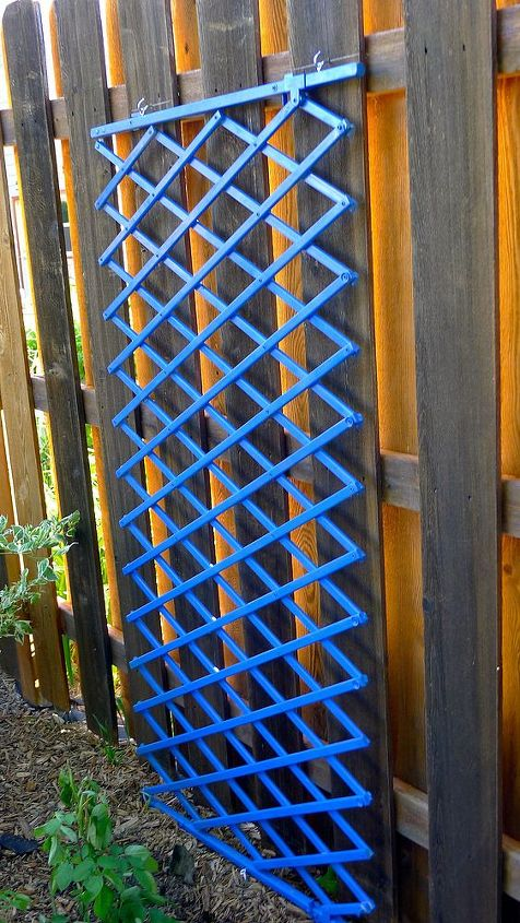 Needed a trellis for a climbing rose and wanted a pop of color in this corner. $3 for a baby gate and $6 for spray paint.