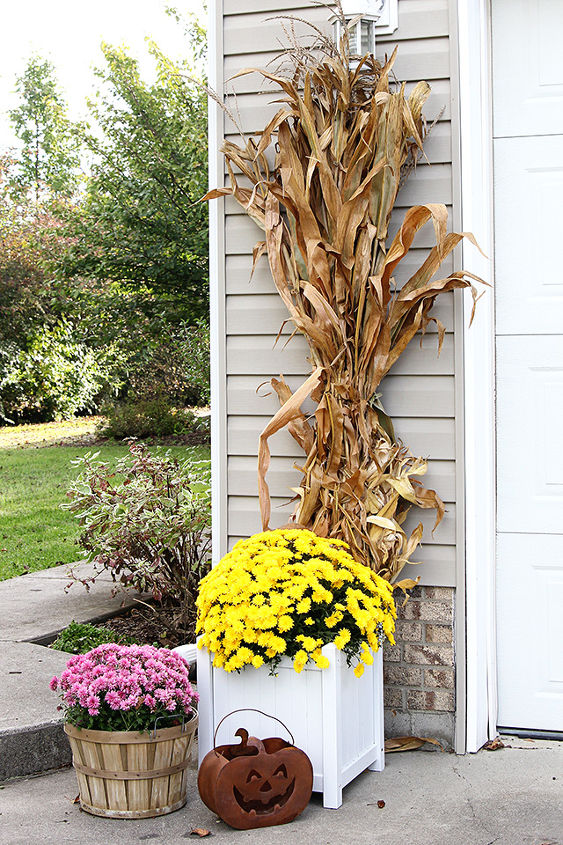 fun and festive fall porch, curb appeal, gardening, outdoor living, seasonal holiday decor, wreaths, Cornstalks and mums stand beside the garage