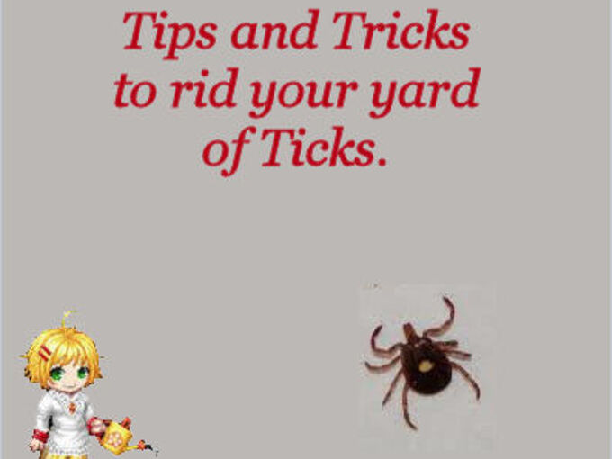 how to control ticks in your yard, gardening, pest control