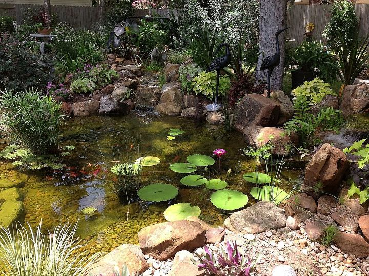 Backyard ponds are truly the jewel of the water feature for Koi ponds near me