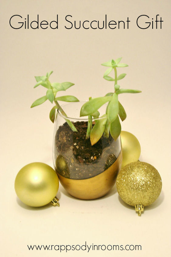 gilded gift succulent planter, container gardening, crafts, flowers, gardening, succulents, The perfect little gift A gilded succulent gift
