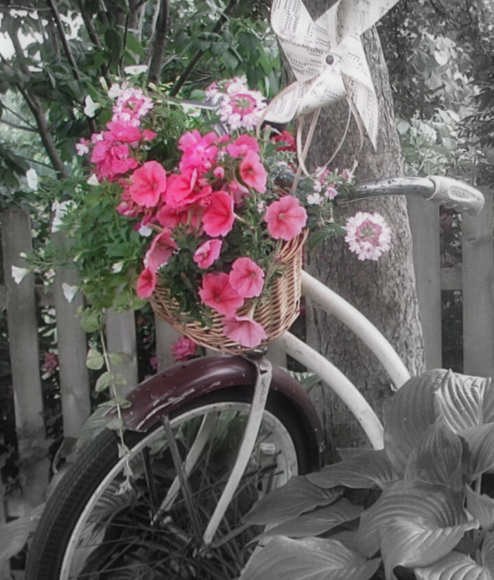 vintage bicycle basket planter, gardening, repurposing upcycling