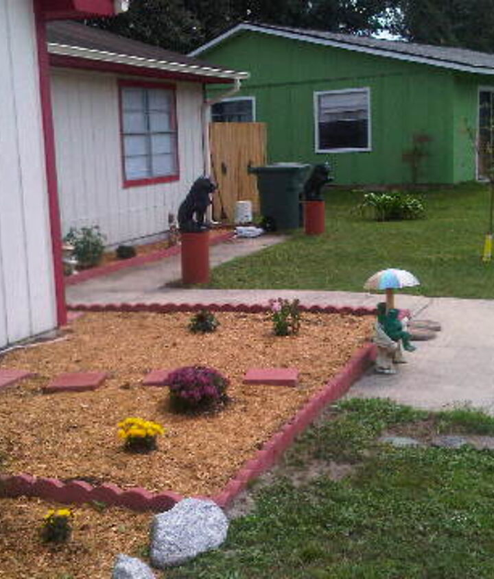my new neighbors are following suit, flowers, gardening, hibiscus, outdoor living